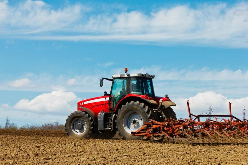 Águeda cria gabinete para impulsionar investimento na agricultura