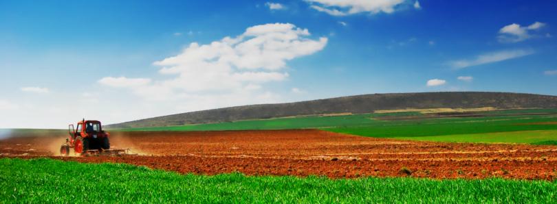 Agricultura lidera renovação do tecido empresarial