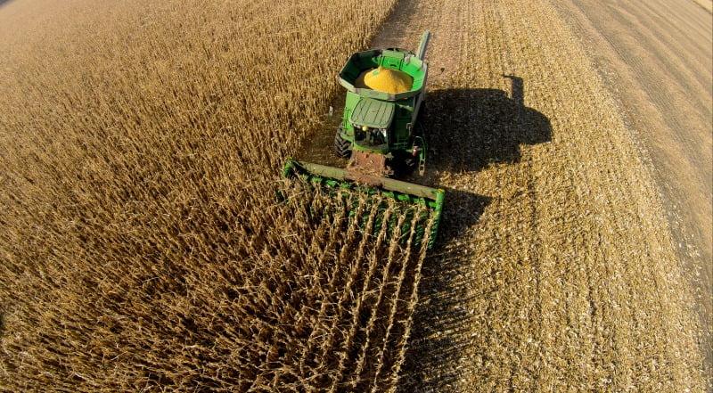 milho colheita Vida Rural