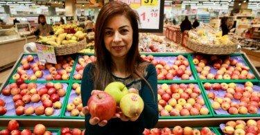 Continente compra 10 mil toneladas de maçã nacional