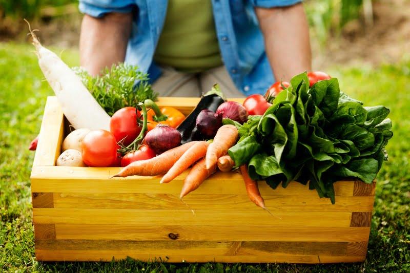 Novo sistema de certificação de produtos biológicos já está em vigor,