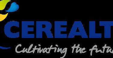 cerealto apresenta resultados de 2016