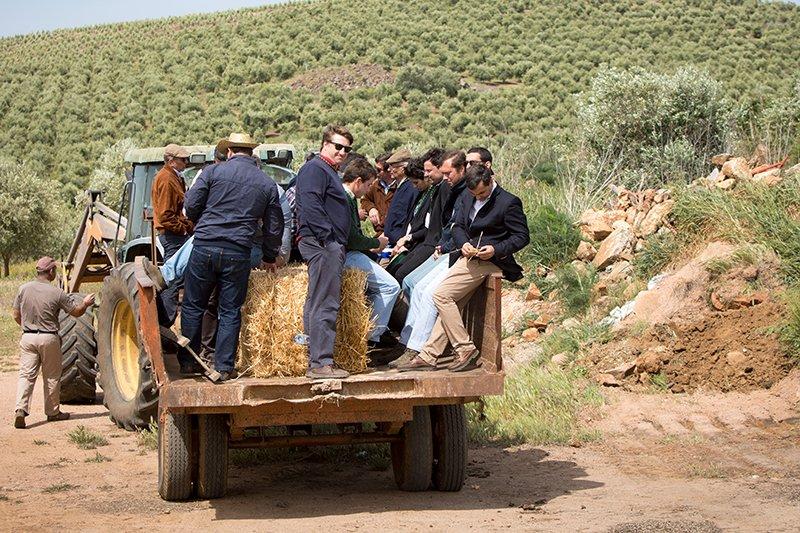 Dia de Campo olival e amendoal - Cersul - Vida Rural