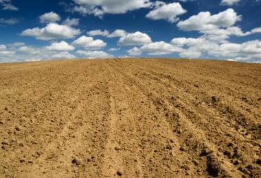 A salinidade dos solos: extensão, prevenção e recuperação