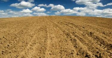 Angola aposta em agricultura de conservação