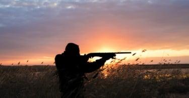 caça Vida Rural