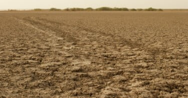 seca - Vida Rural