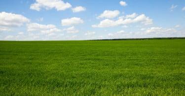 agricultura angolana ainda é sobretudo manual