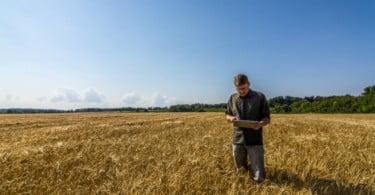 Yara lança plataforma que agrega as suas ferramentas de agricultura de precisão