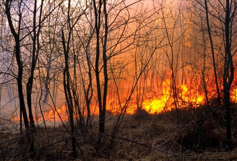 Que lições se podem tirar dos incêndios de 15 de outubro de 2017?