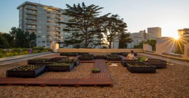Crowne Plaza Porto aposta na produção local com horta urbana