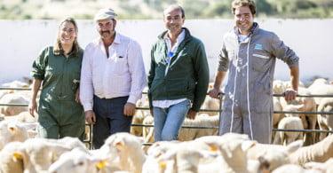 Pequenos Ruminantes - veterinária Ana Simões - Vida Rural  (5)