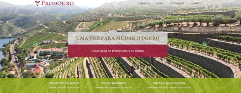 Viticultores do Douro querem dinamizar a região