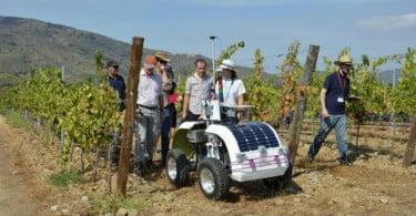 Robot da Vinha já faz ensaios de campo no Douro