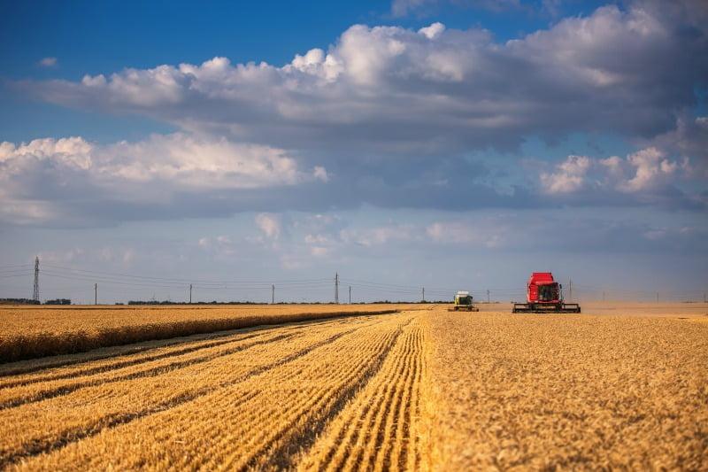 Ministro da Agricultura quer reforçar cooperação comercial Portugal-Palestina