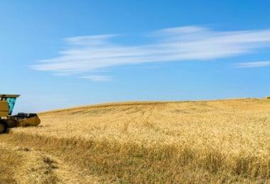 Agricultura vai ter orçamento de 1 481 M€ em 2018