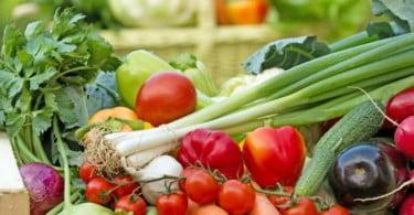 Frutas, legumes e flores nacionais querem atingir exportações de 2 mil M€ em 2020