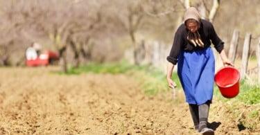 Alterações climáticas podem ampliar desigualdades para mulheres rurais