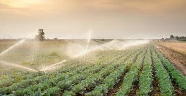 Portugal vai ter centro internacional para a investigação da água