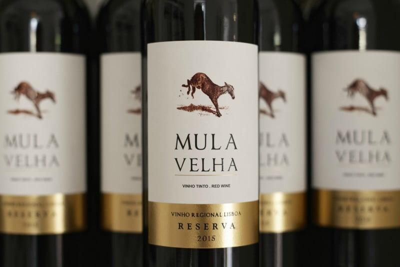 Quinta do Gradil chega à nova carta de vinhos da TAP
