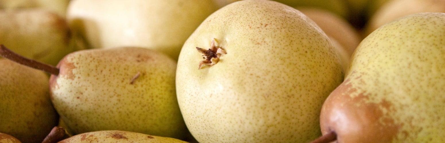 Exportações de pera rocha deverão atingir os 100 M€ em 2019