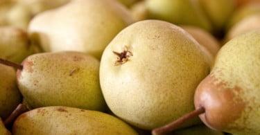 Continente vai comprar 6000 toneladas de pera Rocha DOP até abril