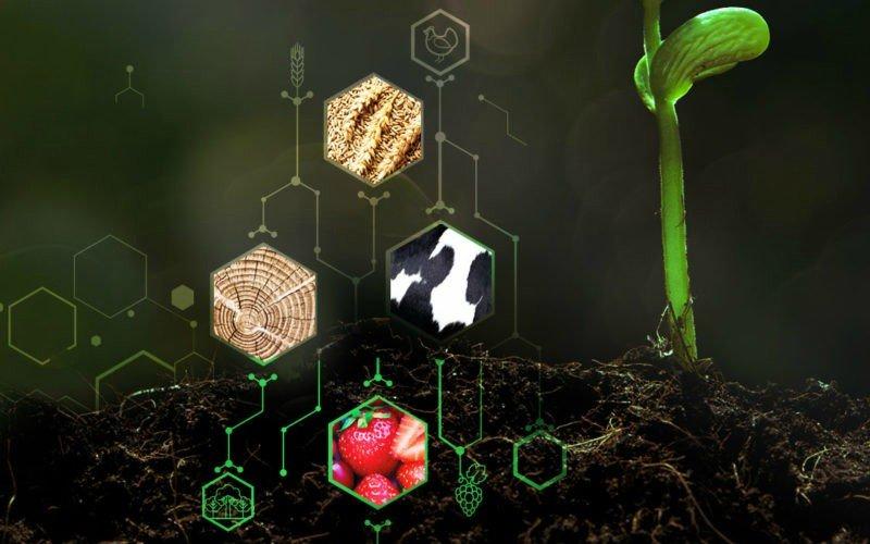4ª Conferência Empreendedorismo e Inovação Crédito Agrícola debate digitalização do setor