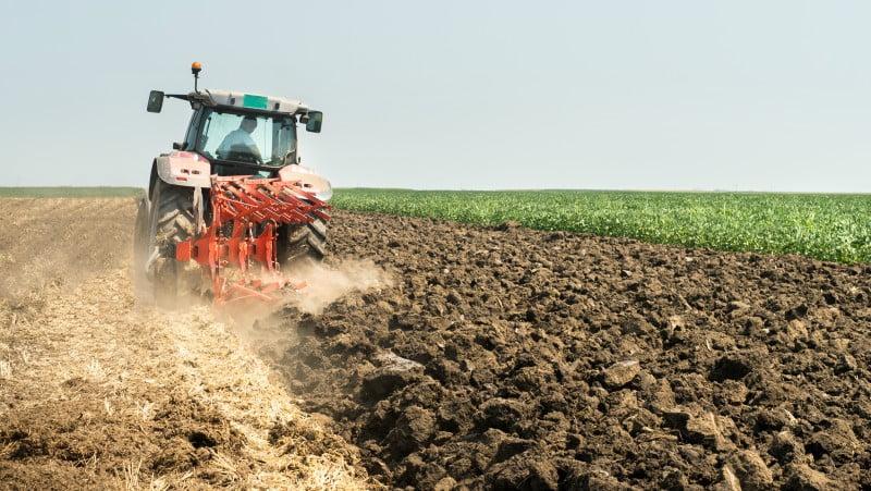 Dimensão das explorações agrícolas portuguesas já vai em 14,1 hectares