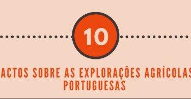 10factossobreasexploraçõesagrícolas1