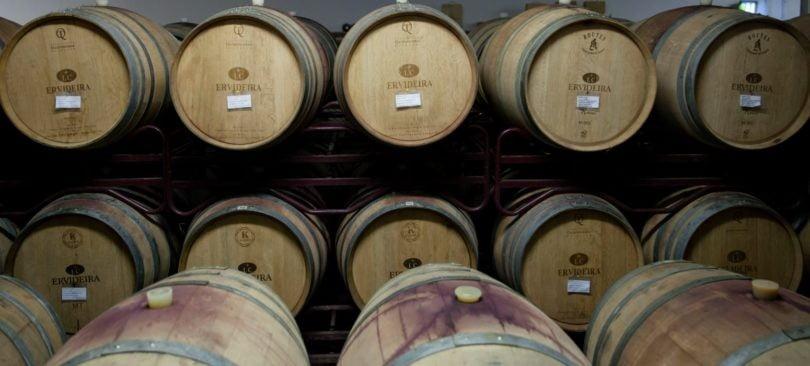 Ervideira cresce 15% em 2017 e aposta em vinhos biológicos