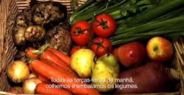 Converter-para-agricultura-biológica