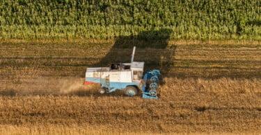 Governo tem 3M€ para agricultores com explorações danificadas por tornado no Algarve
