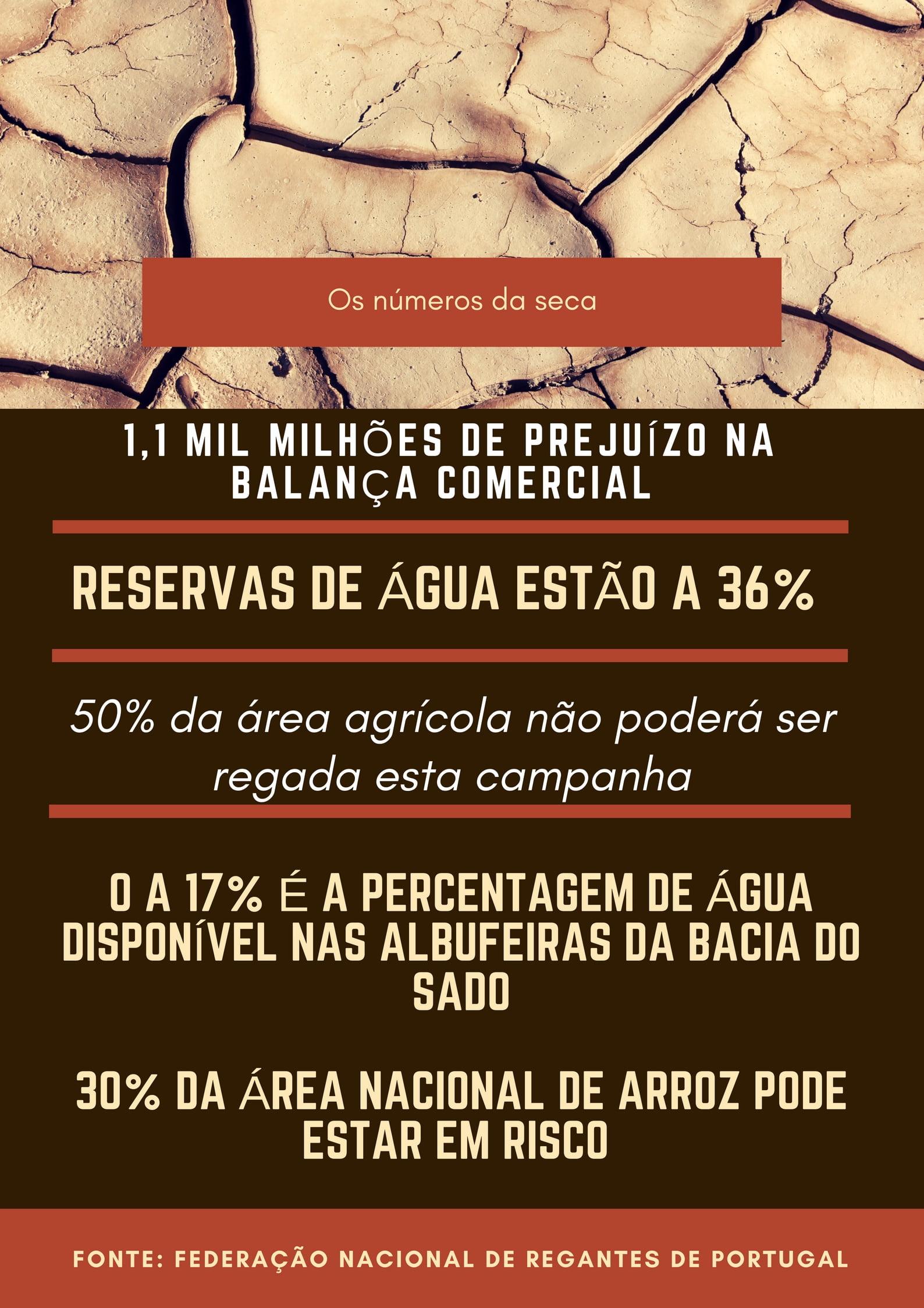 Infografia: os números da seca