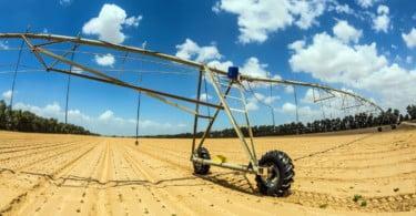 Governo vai isentar de penalizações os agricultores afetados pela seca