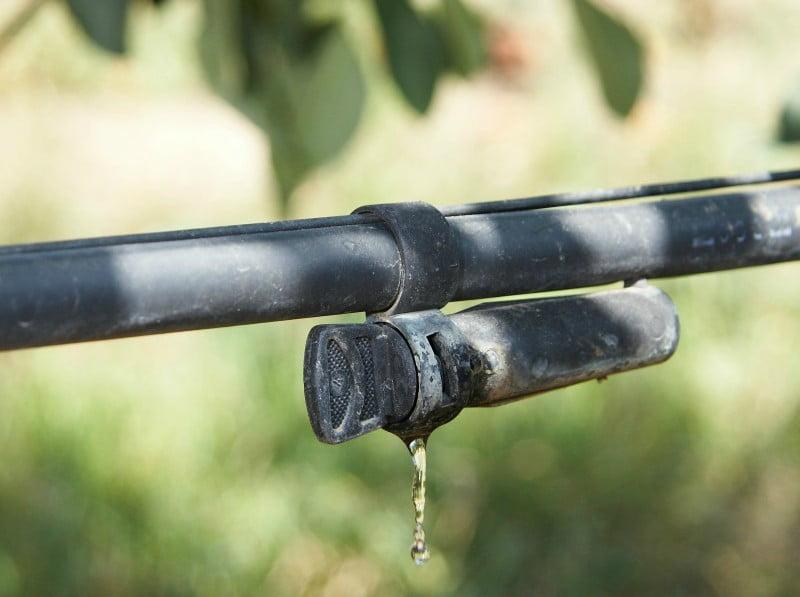 Agricultores pedem investimento em regadio a Sul da Gardunha