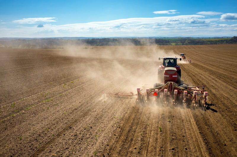 Brexit: Governo britânico vai beneficiar agricultores 'amigos do ambiente'