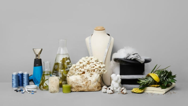 H&M Foundation premeia ideia que cria têxteis com sobras de alimentos