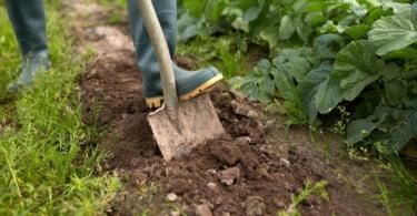 """Farm Europe pede """"visão comum"""" para a agricultura da UE"""