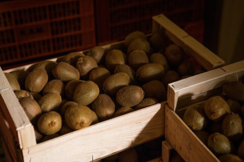 Unir produtores para ganhar força nos mercados