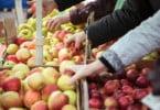 Governo desafia municípios a apostar em rede de mercados locais