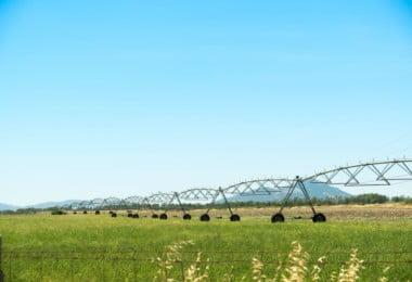 Primeiro-ministro quer setor agrícola preparado para as alterações climáticas
