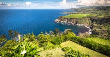 Governo dos Açores quer reforço dos fundos para a agricultura no próximo quadro comunitário