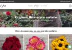 Startup espanhola de venda de flores online chega a Portugal