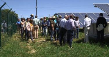 Fenareg pede incentivos à instalação de energias limpas