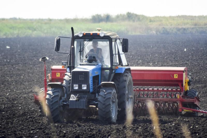 """CNA quer """"medidas compensatórias"""" para responder à quebra da produção agrícola"""