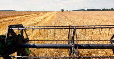 Governo assina acordo para reforçar ação da FAO em Portugal e na CPLP