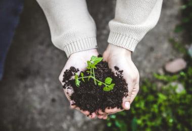 Estatuto da Pequena Agricultura Familiar já foi aprovado
