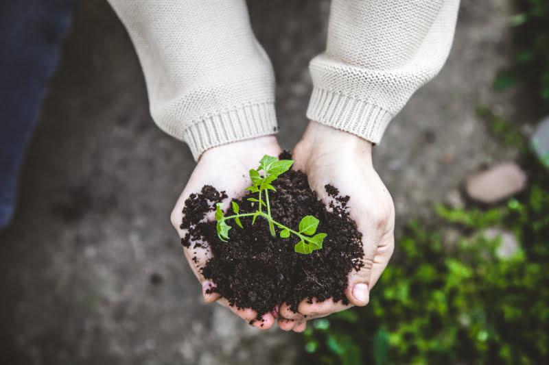 AgriEmpreende recebe 14 candidaturas de ideias de negócio