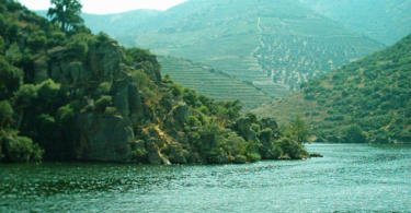 Douro vinhateiro Vida Rural
