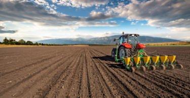 Fundos comunitários ajudam produtores da região Oeste a aumentar produtividade